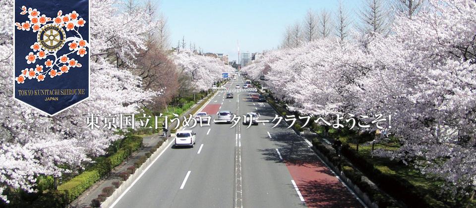 東京国立白うめロータリークラブへようこそ